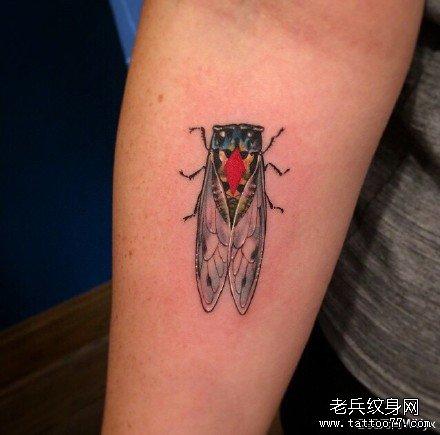 手部马虫纹身图案
