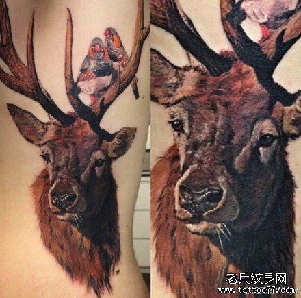 后腰鹿纹身图案
