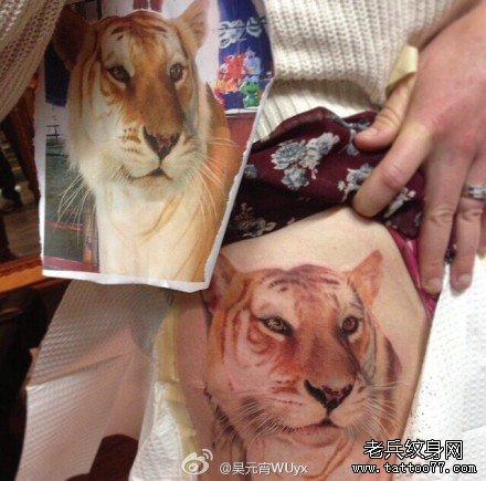 霸气的满背下山虎纹身图案