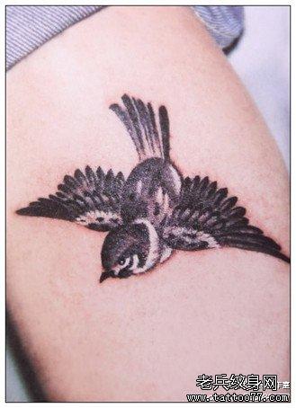 腿部小燕子纹身图案图片