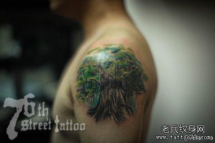胳膊大树纹身图案图片