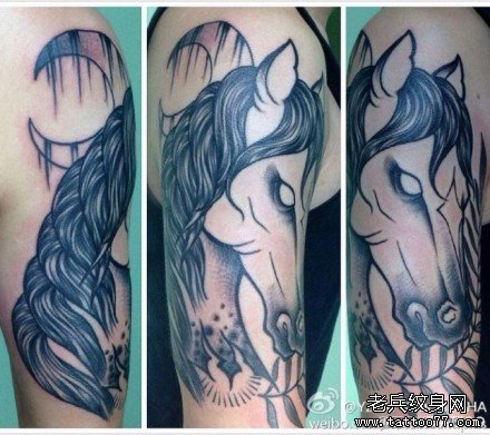 胳膊马纹身图案