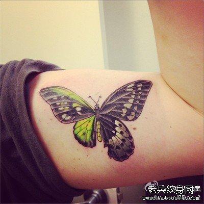 胳膊蝴蝶纹身图案