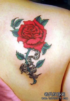 玫瑰纹身图案好看吗?图片