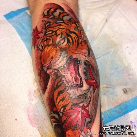 小腿老虎图腾纹身_纹身图案大全
