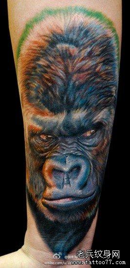 满背欧美大片大猩猩纹身图案