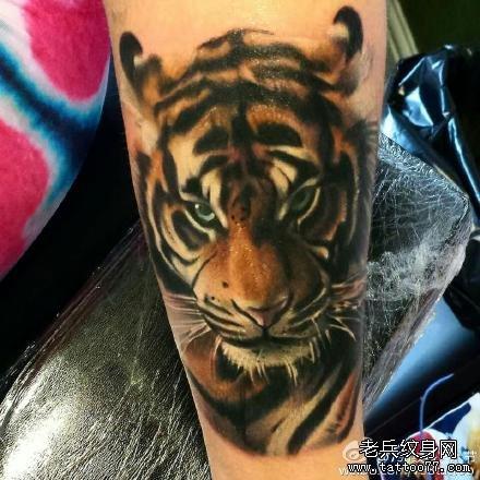 满背老虎纹身图案