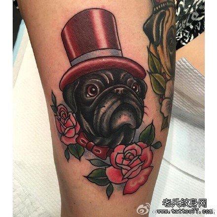 手臂海猫咪纹身图案