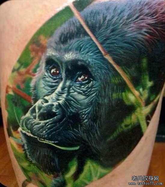 纹身图案 金刚大猩猩纹身手稿 > 手臂大猩猩纹身图案  手臂大猩猩纹身