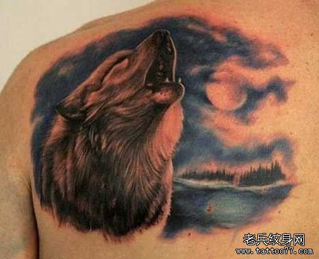 后背狼纹身图案图片