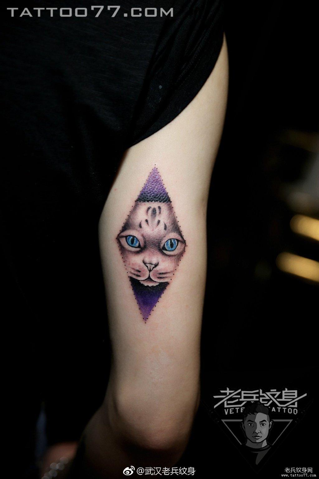 手臂彩色可爱小猫咪刺青作品