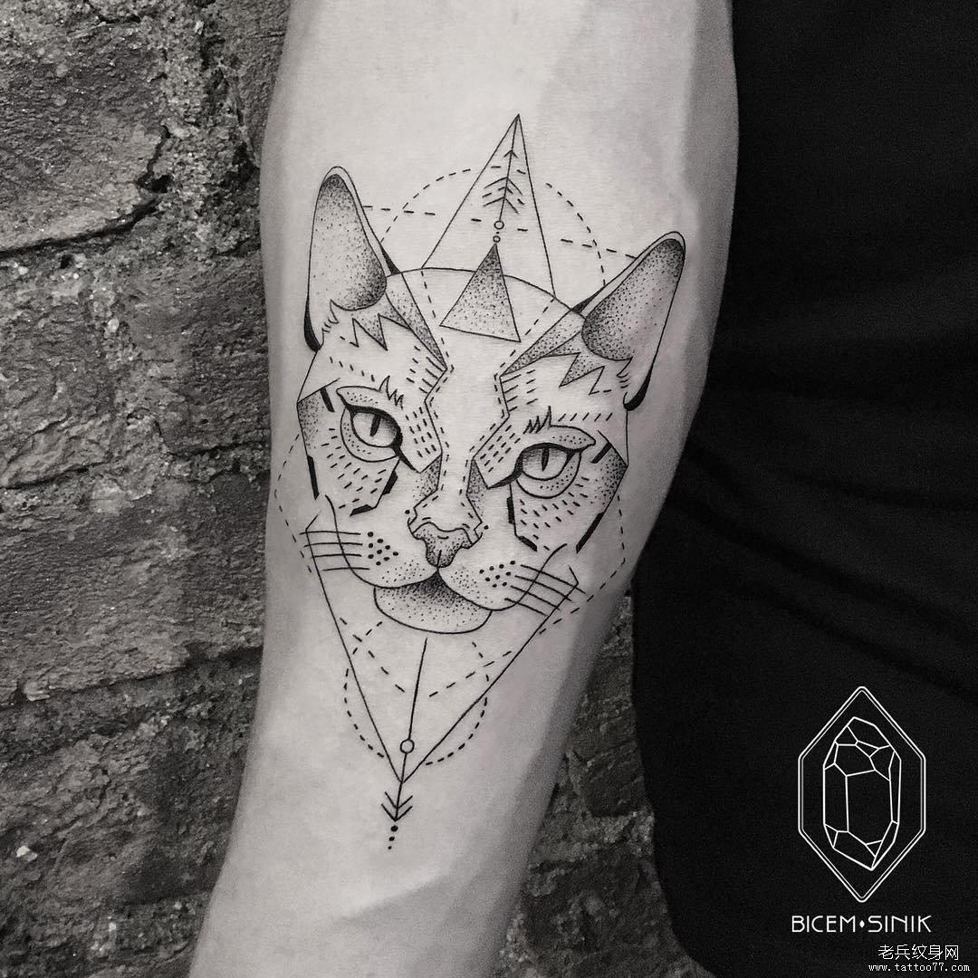 手臂点刺几何猫咪纹身图片