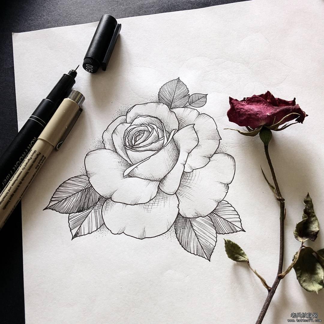 浏览           小清新玫瑰纹身图案         手臂彩色玫瑰纹身图案