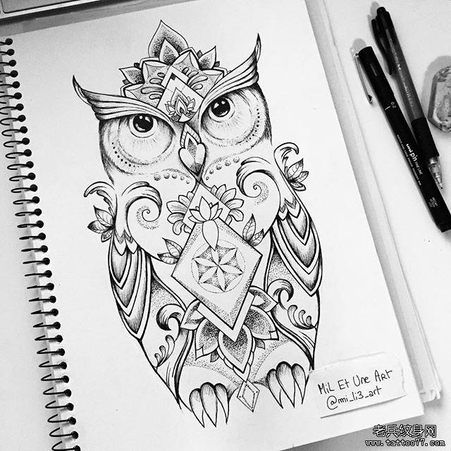 动物蕾丝猫头鹰小清新纹身图案