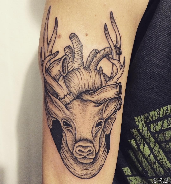 手臂鹿与心脏纹身图案图片