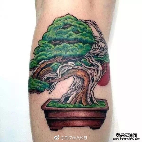每个喜欢纹身的小伙伴 都抱有憧憬的部位 不管是小腿部位还是大腿部位