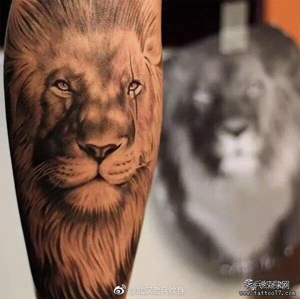 写实狮子的画法步骤