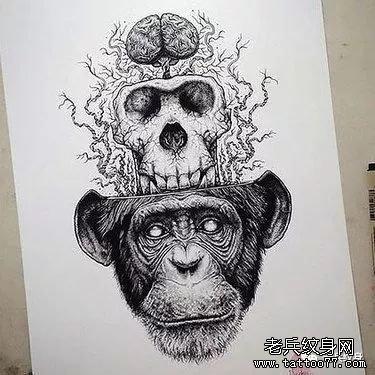 猴子纹身手稿图案