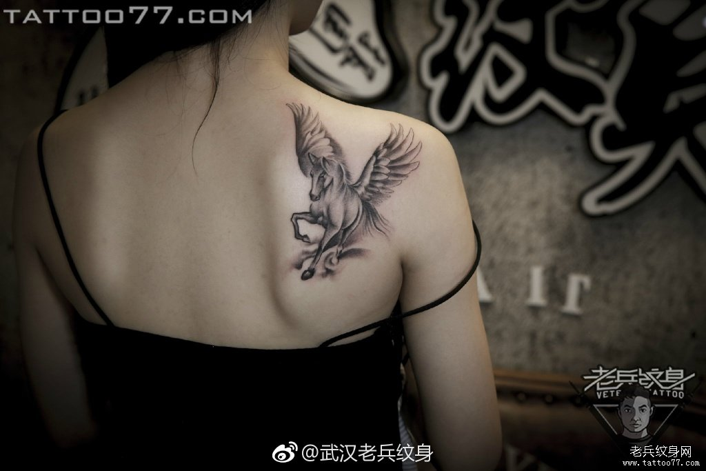 肩部黑灰飞马纹身图案图片