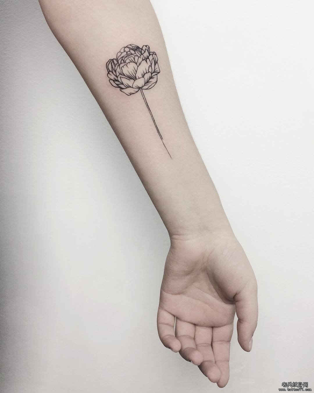 手臂简约蚂蚁纹身图案
