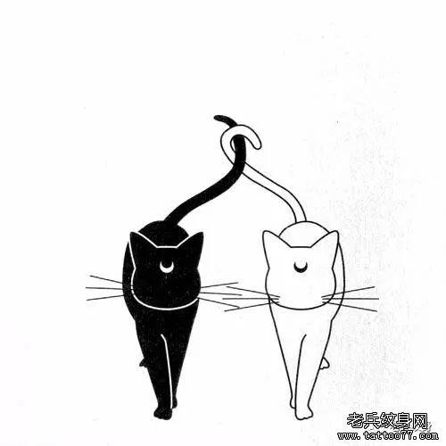 可爱的手绘黑白小猫