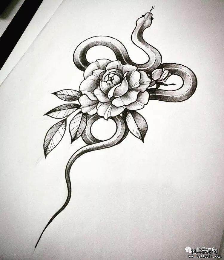 牡丹花蛇纹身手稿纹身图案