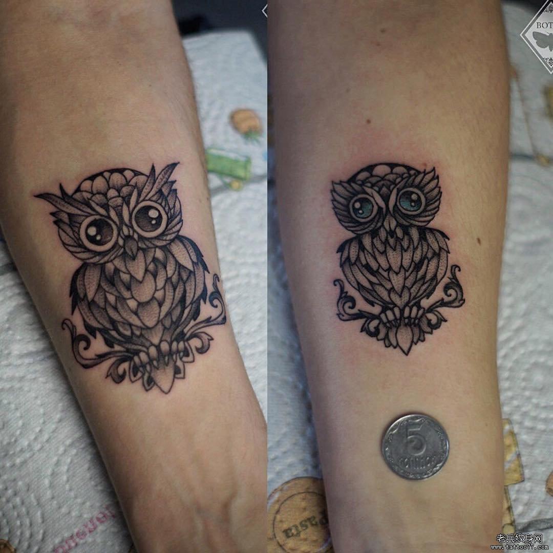 猫头鹰可爱黑灰简约小腿纹身图案
