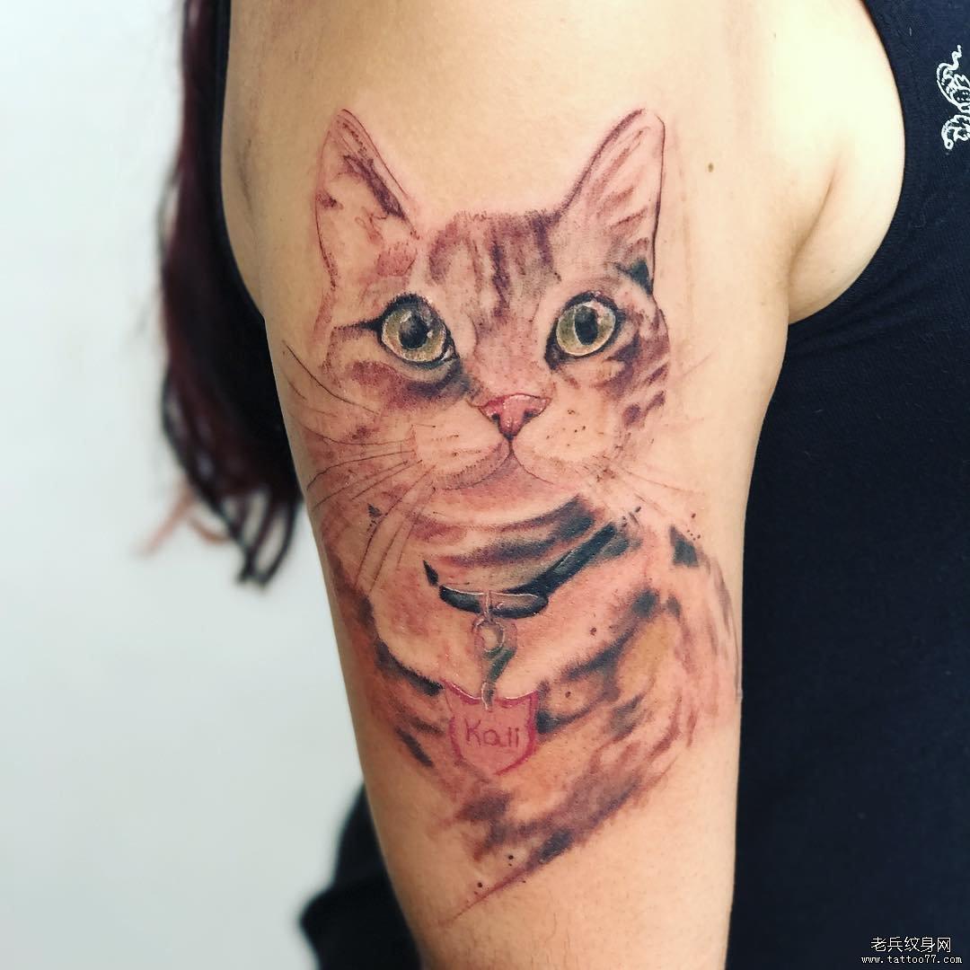 大臂小猫纹身图案