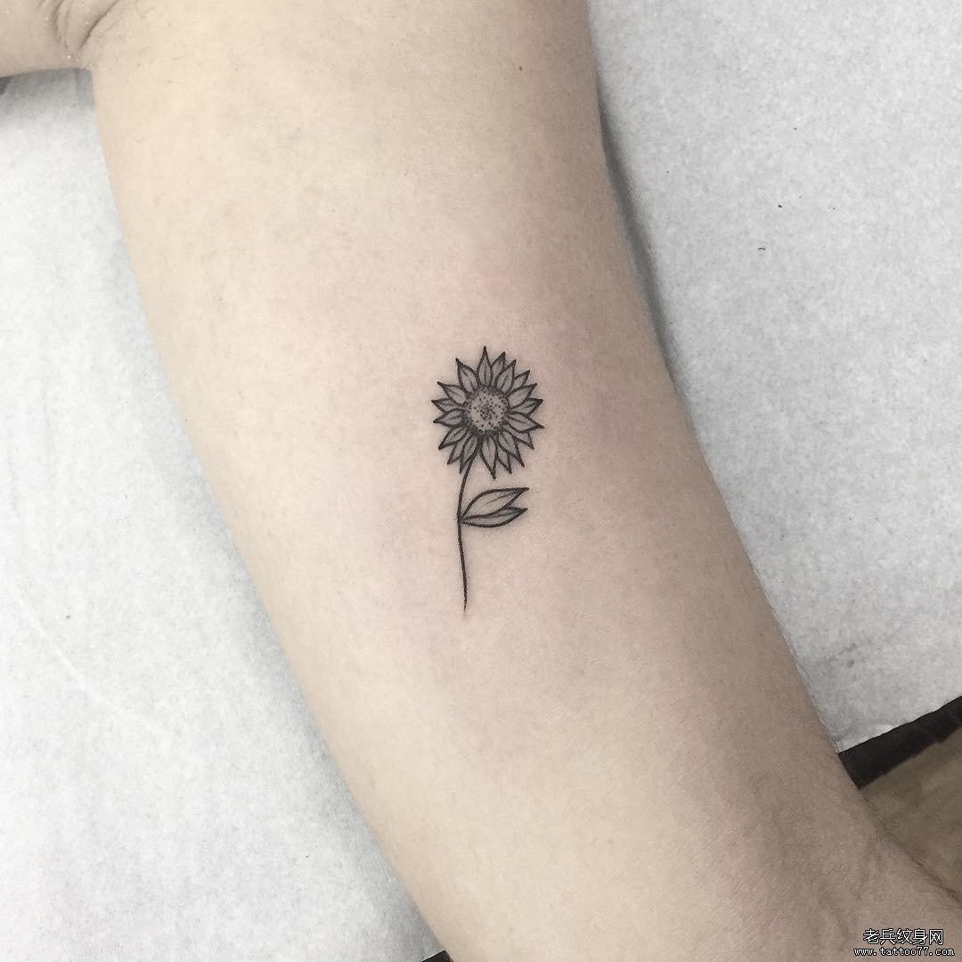 手臂简约向日葵线条纹身