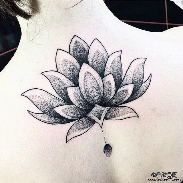 黑灰点刺莲花后背纹身图案