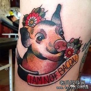 纹身素材第582期——十二生肖猪图片