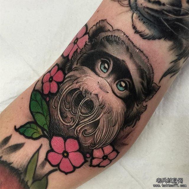 色彩猴子樱花纹身图案
